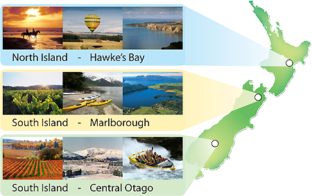 We provide work in Hawkes Bay, Marlborough and Central Otago in New Zealand